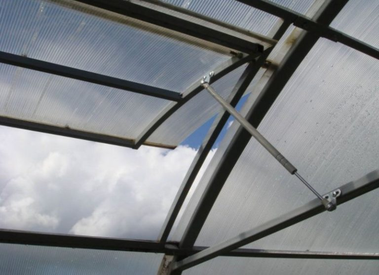 Вентиляция помещения, поддержание баланса при перепадах температуры играют огромную роль в жизни и росте растений