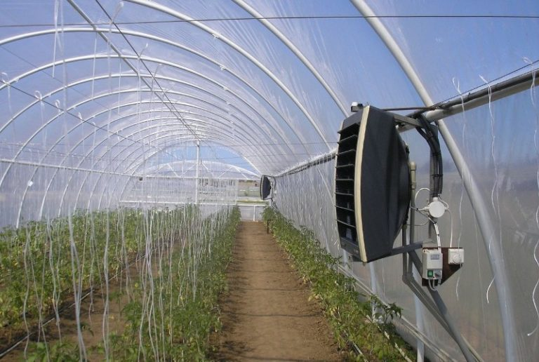 Существуют такие способы отопления теплицы: с помощью солнечных батарей, газом, с использованием котла и др.