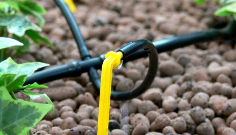 Расположите капельницы так, чтобы их не было слишком много на одну группу растений