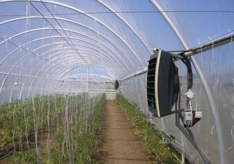Только учитывая и контролируя все важные для выращиваемых культур параметры, можно гарантировать их высокую урожайность