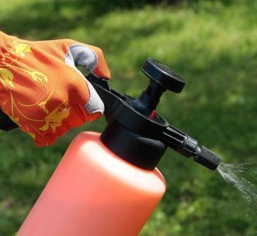 Обработка томатов борной кислотой - наиболее удобный и эффективный способ их подкормки