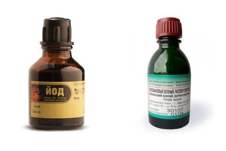 Если открыть домашнюю аптечку, то там, скорее всего, обнаружится йод и зеленка. Многие огородники используют эти средства