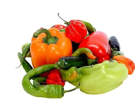 Сладкий перец выращивают в основном в теплицах и парниках