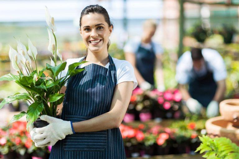 Выращивание цветов, как бизнес, хорошо развивается и в России