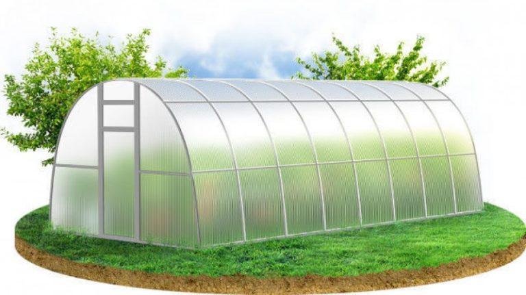Первый шаг при планировании арочных теплиц — определение места будущей стройки, прямо влияющего на возможную урожайность