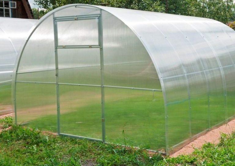 Теплиц москвичка является самой востребованной у огородников и садоводов