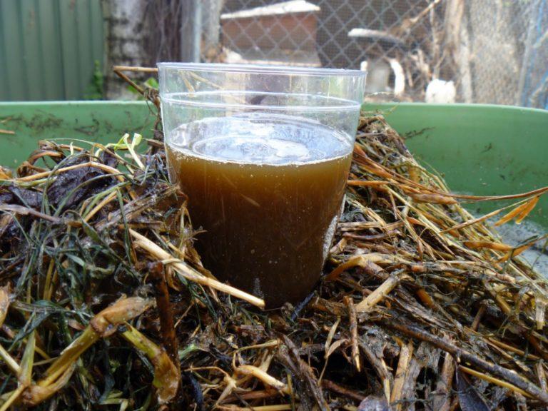 Удобрение «Зеленый чай»