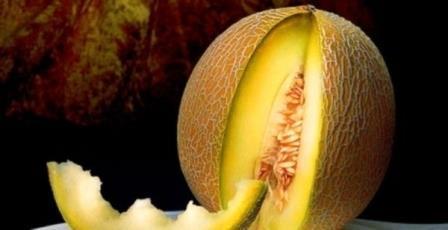 Одной из любимых бахчевых культур для многих является дыня