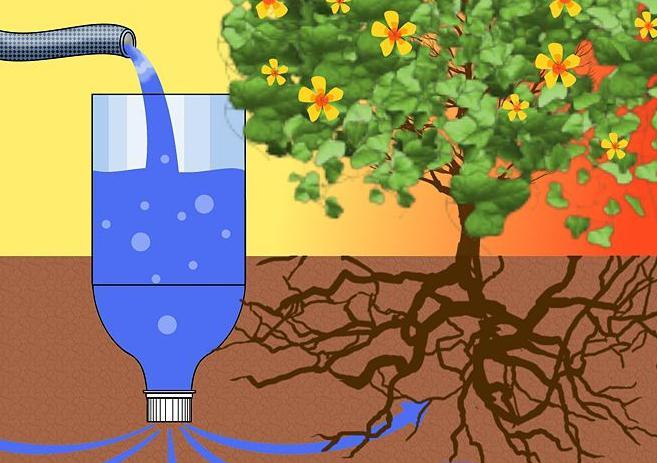 Снижение влажности воздуха в теплице тоже может значительно уменьшить риск заболевания