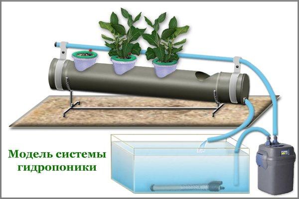 Основной набор конструкции — это не только насос и горшки, но и почва, питательный раствор и другие элементы