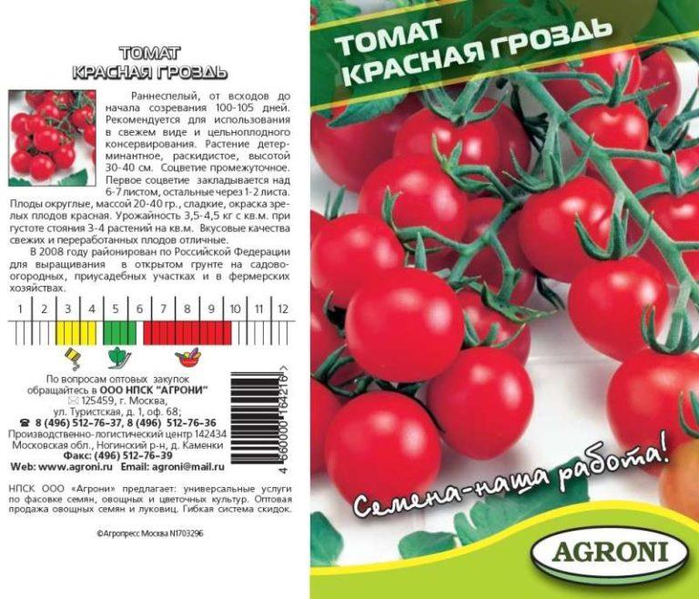 «Красная гроздь» является декоративным сортом, поэтому высадка может осуществляться и в специальные горшки