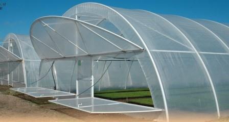 Строение теплицы оборудовано таким образом, чтобы растения получали максимальное количество света и тепла
