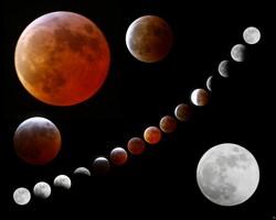 Посевной лунный календарь огородника Украины на 2018 год
