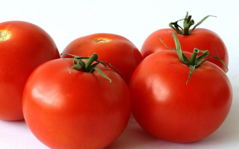 Вкус выраженный томатный, в нем имеется кислинка и сладость. Плоды томата Яблонька России округлые, ровные и красные