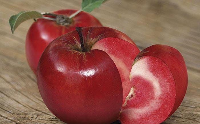 Плоды растут на деревьях, но имеют помидорную фактуру и цвет