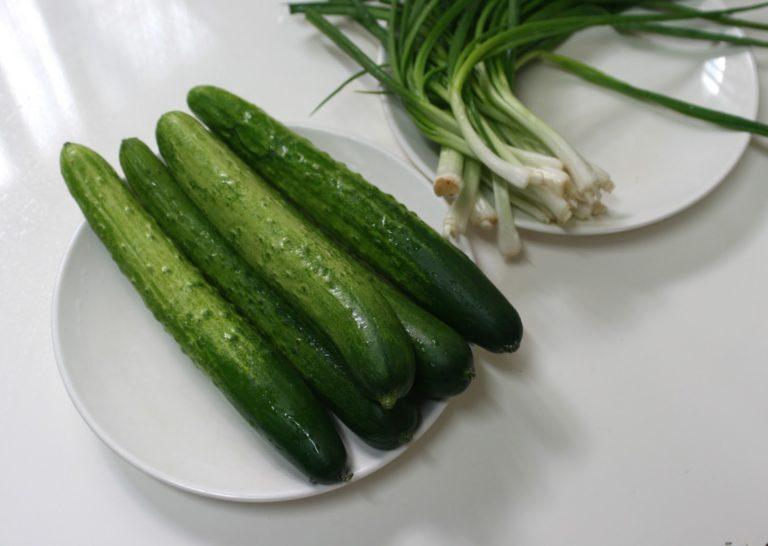 «Московский пижон F1» имеет длинные и большие плоды
