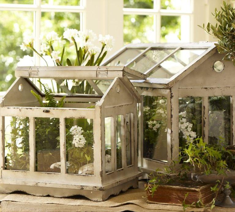 Домашняя теплица красиво гармонирует с растениями на окне