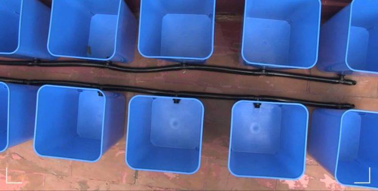 Метод периодического затопления обычно применяется для массового производства клубники