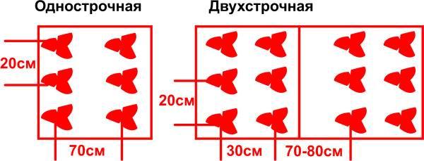 Среди схем выделяют: 1-строчную, 2-строчную и 3-строчную