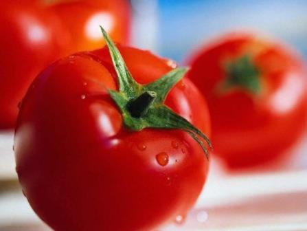 Раннеспелые томаты способны разнообразить меню и эффективно восполнить недостаток витаминов