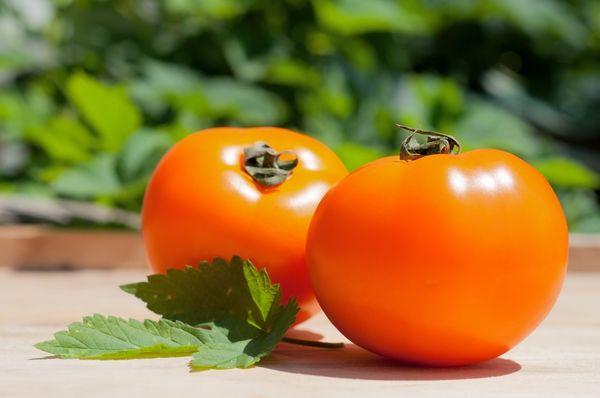 Внешне плоды томатов сорта Хурма очень напоминают одноименный фрукт
