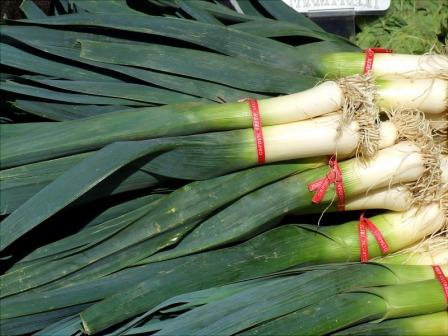 К самым популярным овощам на участках садоводов можно отнести лук порей