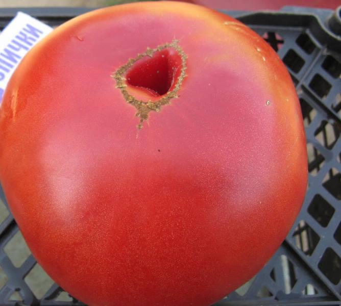 Малиновый гигант - не лучший вариант для консервации: плоды имеют не совсем подходящий размер
