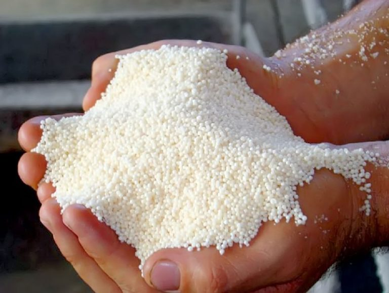 При использовании минерального удобрения предпочтения следует отдавать аммиачной селитре, калийной соли и суперфосфату