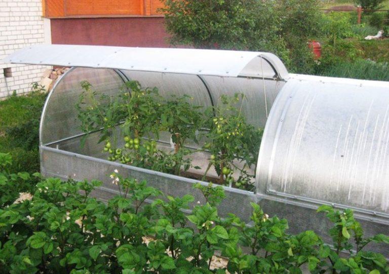Чтобы получить богатый урожай осенью, требуется позаботиться о нем еще ранней весной (построить мини-теплицы своими руками)