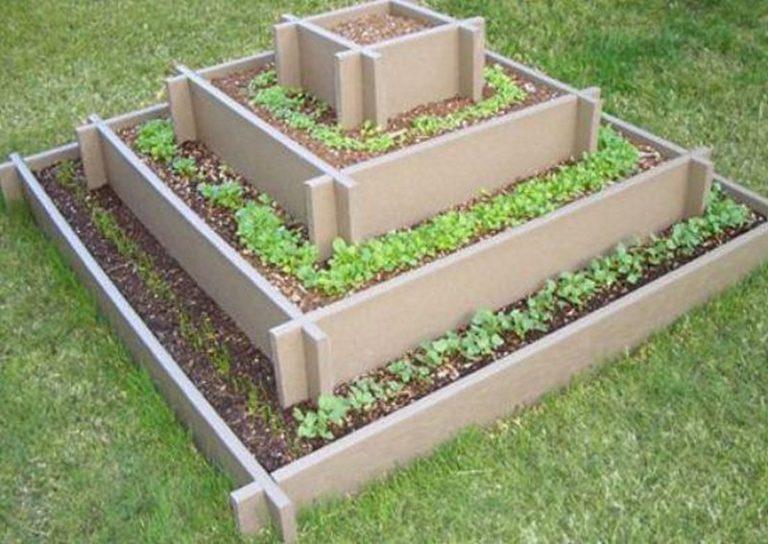Такой подход позволит не только насладиться овощами, выращенными своими руками, но даст возможность контролировать этот процесс и наблюдать за ним