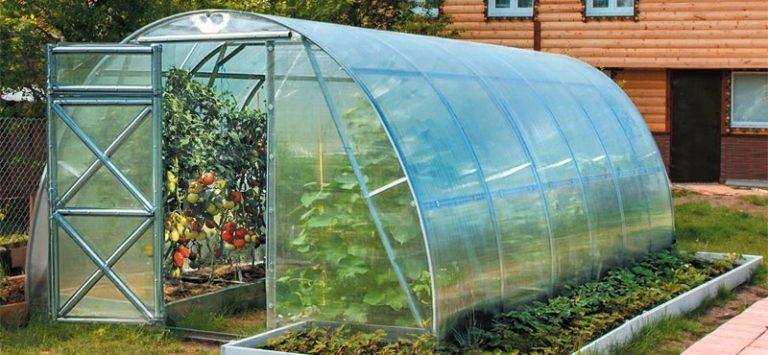 Арочное сооружение является одним из популярных решений, оно не только эстетично выглядит, но и создает хорошие условия для выращивания, его легко собрать