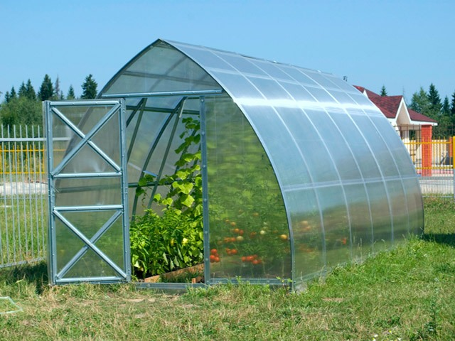 В качестве покрытия лучше всего применять поликарбонат или стекло, некоторые используют пленку для покрытия, но она недолговечна