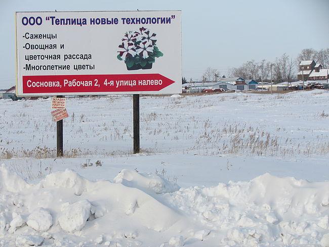 Расположены теплицы «Новые технологии» в Омской области в селе Сосновка