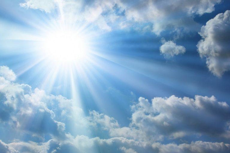 Нужно по возможности сделать так, чтобы утром растения в теплице получали достаточное количество солнца, т.к. ветвям томатов нужно тепло