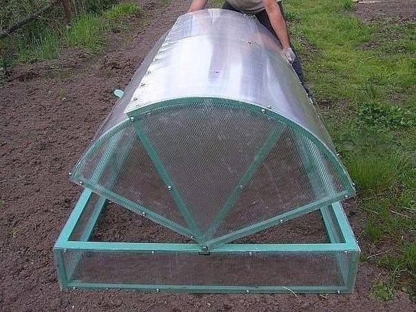 Парник представляет собой небольшую конструкцию, используемую преимущественно для выращивания рассады, ранних всходов и корнеплодов