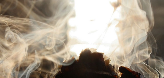 В применении нет ничего сложного. Вам необходимо сжечь таблетку внутри теплицы, при этом закрыть все двери и форточки, дабы снизить потери полезного дыма