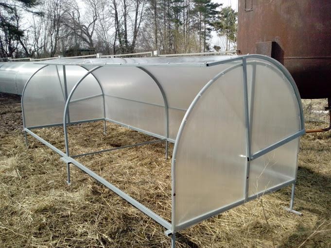 Маленькие огурцы в теплице из стального прута будут под более надежной защитой