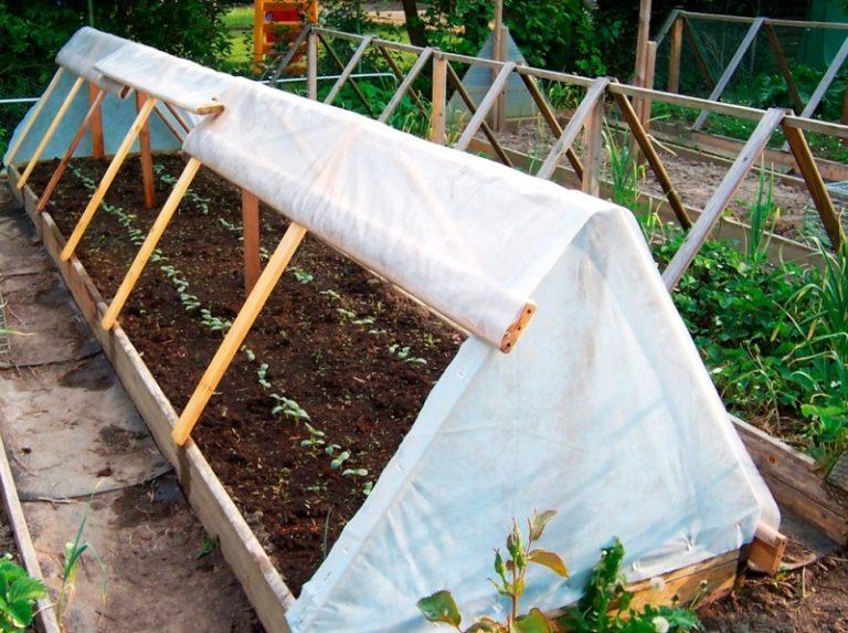 Собственная теплица для огурцов или небольшой парник — это замечательный способ вырастить самостоятельно полезные овощи, в которых нет химии