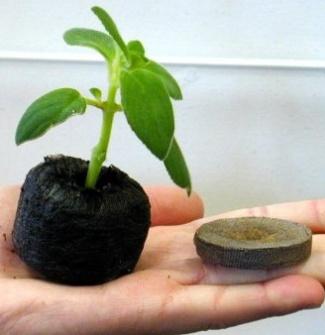 Заранее и качественно подготовиться к огородному сезону поможет «Таблетка»