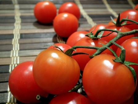 Некоторые овощеводы не отказывают себе в удовольствии выращивать мини-помидоры в цветочных горшках