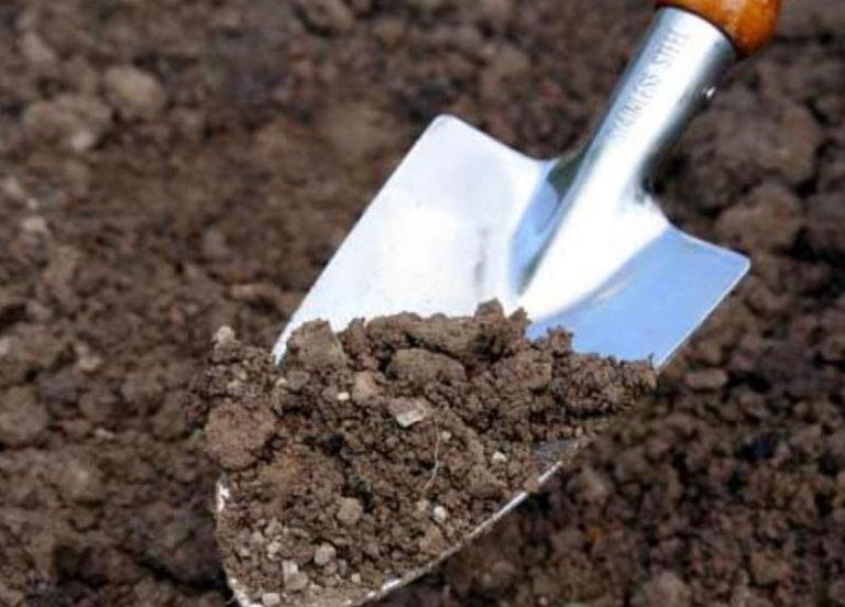 Для получения хорошего урожая в следующем году, подготовка земли к посадке должна начинаться осенью