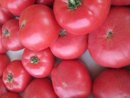 Особой популярностью у огородников пользуются розовые помидоры