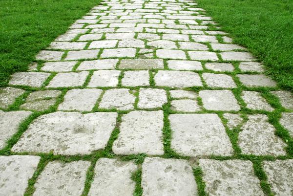 Мох может располагаться на садовых дорожках