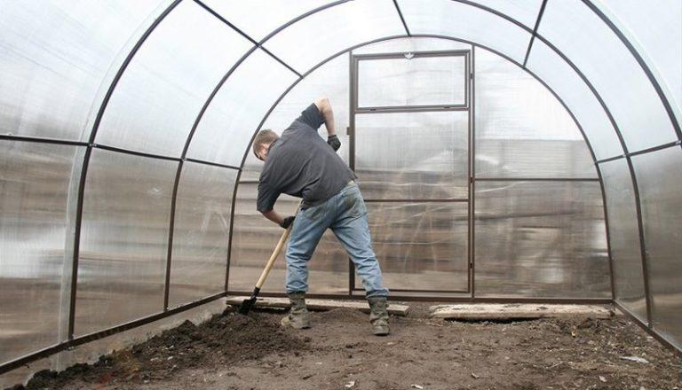 Заражение теплиц и растений различными болезнями — не редкость, поэтому, выращивая овощные культуры в теплице, не стоит забывать о предварительной обработке помещения против различных вредных микроорганизмов и насекомых
