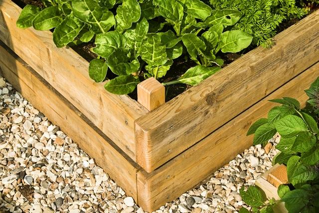 Почва для растений на таких грядках обязательно должна быть рыхлой