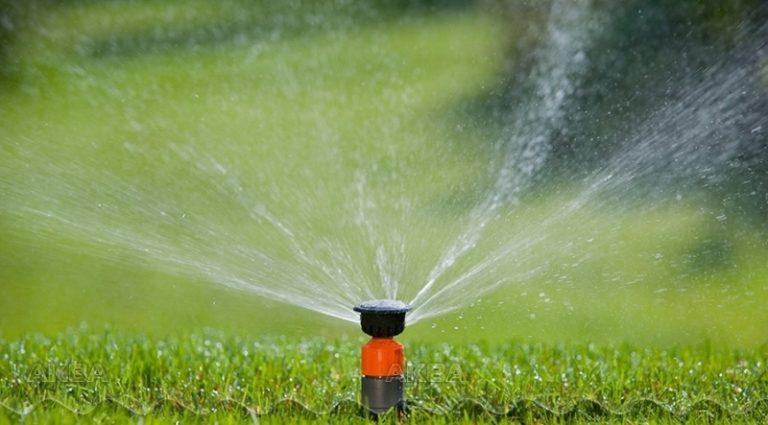 Современные системы полива состоят из автоматической дождевальной конструкции