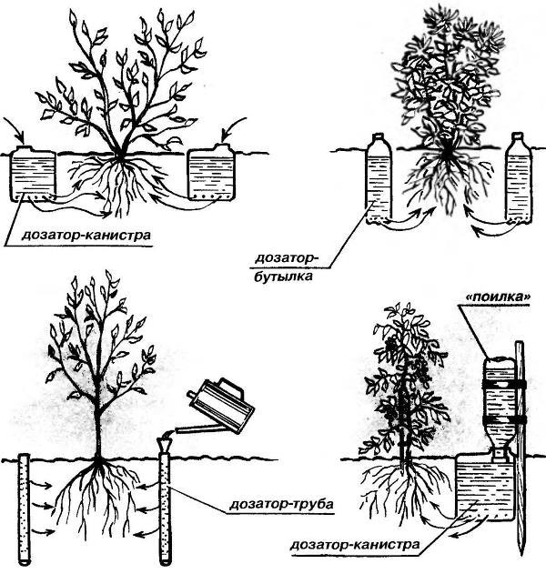 Автополив растений в теплице саду