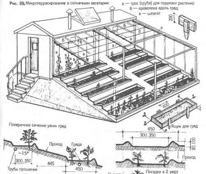Внутри солнечного вегетария, построенного собственными руками, возводятся террасы, где будут располагаться грядки