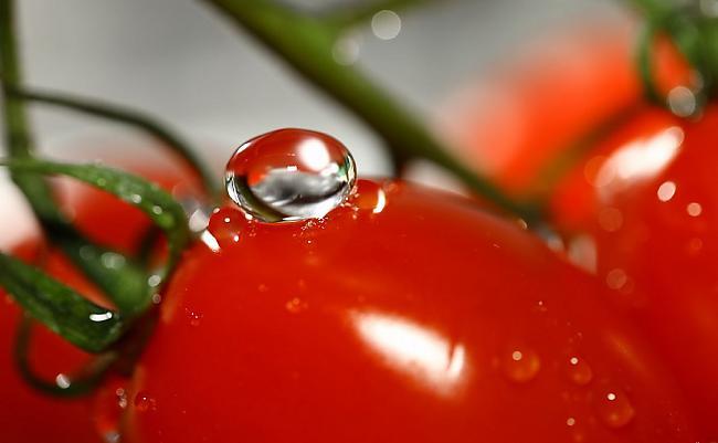 Еще с прошлого века заядлые огородники стали использовать гибриды вместо сортовых овощей