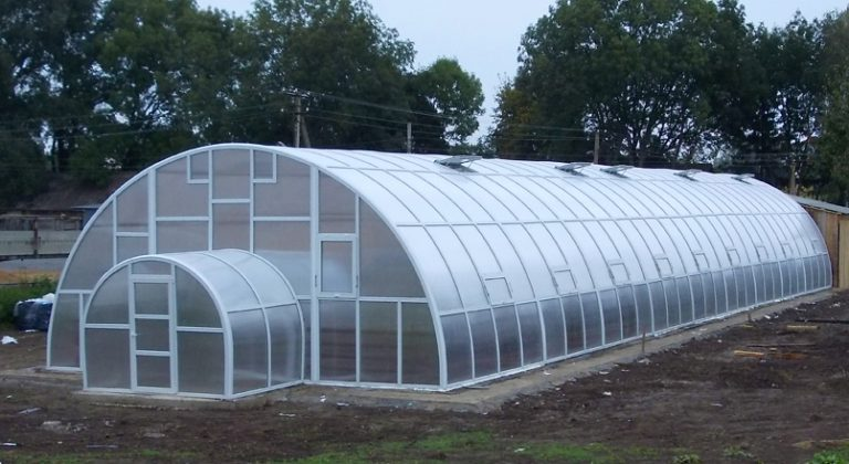 Фермерские теплицы из поликарбоната принадлежат к виду теплиц парникового типа